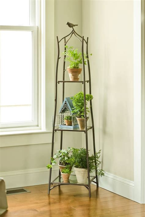Branch Plant Stand  Plant Stands  Gardener's Supply. French Provincial Chairs. Free Standing Pergola. Teal Living Room Ideas. Garage Organization Plans. Hanging Pots And Pans. Cabinet Factory. White Macaubas. Black And White Bathroom Floor Tile