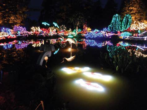 magical christmas lights display