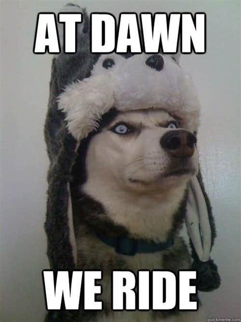 dawn meme funny image photo joke  quotesbae