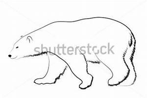 Standing Polar Bear Clipart (87+)