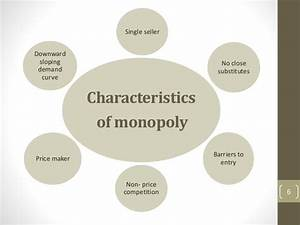 Ufe0f Characteristics Of A Monopoly Structure  Difference Between Monopoly And Monopolistic