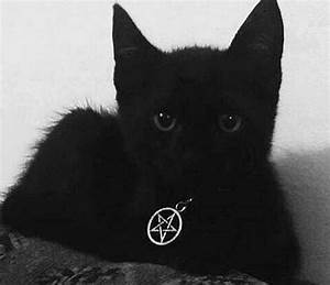 minerva s collar for hecate has an anti possession symbol