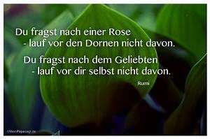 Welche Blume Steht Für Leben : mein papa sagt top 10 zitate liebe mit bild ~ Whattoseeinmadrid.com Haus und Dekorationen