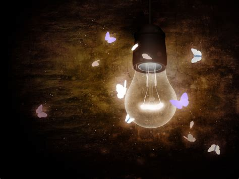 light bulbs etc near me navigating by feedback what leaders and moths have in