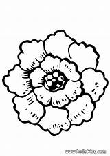 Coloring Peony Flower Pages Fleur Pansy Coloriage Para Rose Colorear Flores Hellokids Dessin Flowers Printable Dibujar Vie Mandala Dibujos Adult sketch template