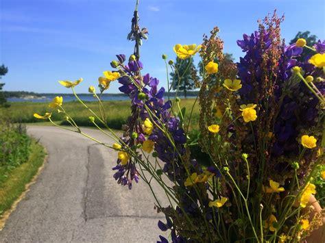Celebrating Midsummer Sweden Back Home