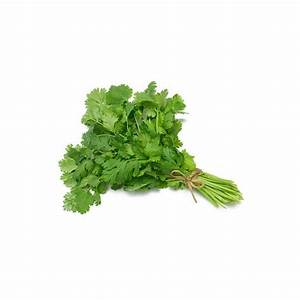 Coriander Seeds, Whole - Buy Spices Online, Calypso ...