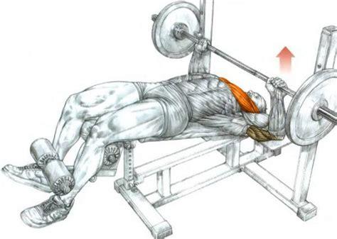 decline bench press decline barbell bench press bodybuilding wizard