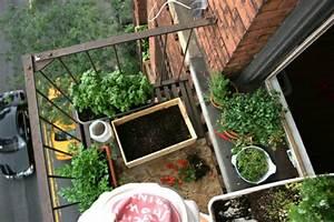 bio garten auf der eigenen terrasse einrichten With katzennetz balkon mit caleta garden apartments