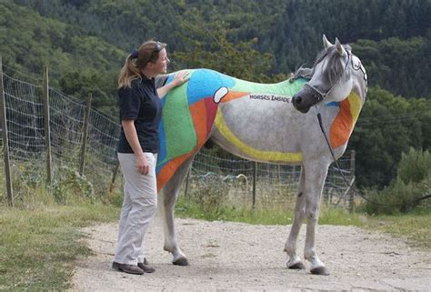 equine horses cool very paintings massage horse teach colorful breaking colt action higgins muscles than massage3