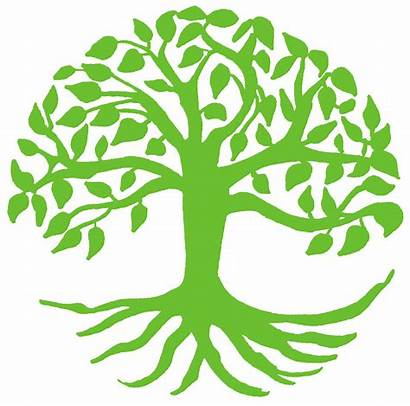 Tree Growth Clipart Spiritual Growing Svg Transparent