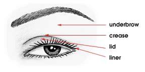 Diagram For Eye Makeup by Create A Smokey Eye Cheer Makeup Magazine