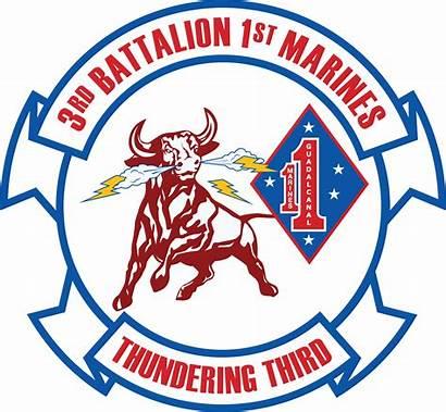 Battalion 1st 3rd Marine Usmc Regiment Marines