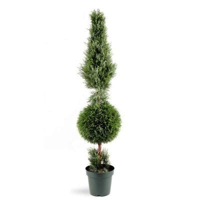 National Tree Company 5 ft. Juniper Cone and Ball Topiary