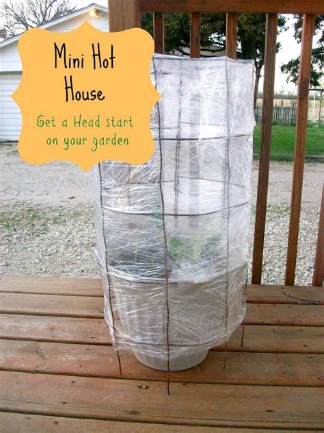 diy green house ideas  designs