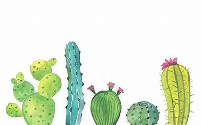 Desktop Watercolor Trendy Map Pc Cactus Laptop