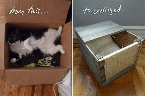 wooden shipping pallet turned diy cat bed shipping