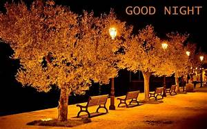 Best Romantic Good Night HD Images and Pictures Download