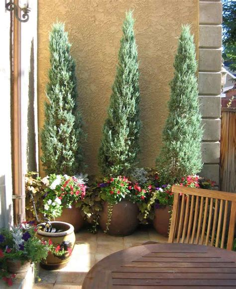 tuscan plants tuscan style backyard landscaping pictures 34 permanent lanscape