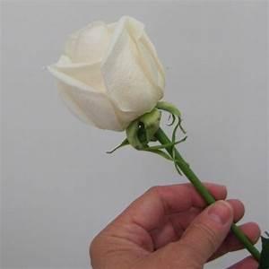 Removing Rose Guard Petals - Wedding Bouquet Tutorial