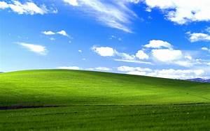 Windows XP Bliss Wallpapers