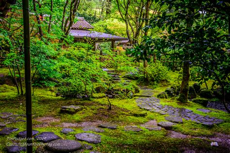 the portland japanese garden b roll by tim padget