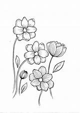 Wild Coloring Flowers Pdf Drawing Flower Wildflower Outline Embroidery Away Sketches sketch template