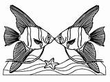 Coloring Angelfish Pages Kissing Couple Angel Fish Drawing Clipartmag Death sketch template