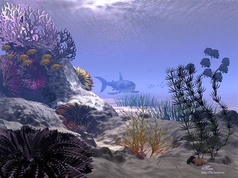 fond d ran de bureau gt wallpaper fond d 39 ecran aquarium