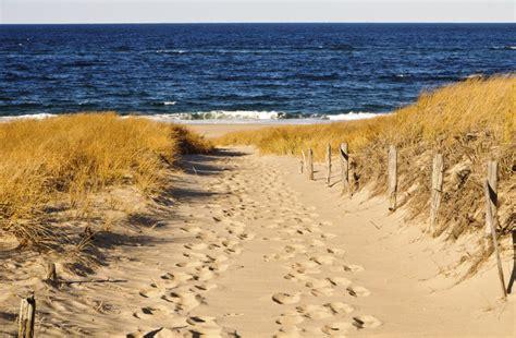 Summer's Cheat Sheet Choosing A Beach In Cape Cod