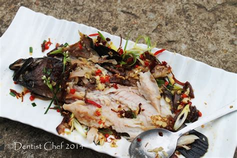 fish steamed xo sauce grouper coral chinese trout recipe sweet steam chili succulent firm meat whole fresh spicy