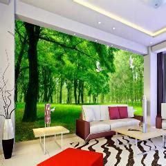 natureza sa 250 de da floresta 3d estereosc 243 pico 3d papel de parede tv fundo papel de parede da sala