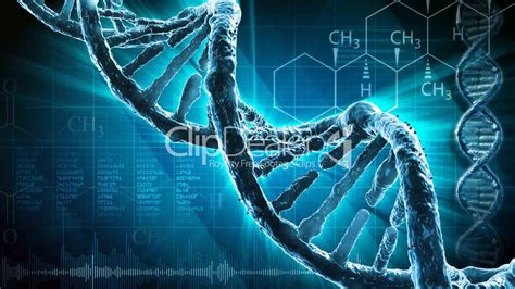 dna strand royalty  video  stock footage