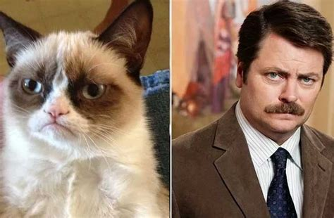 Celebrities And Their Cat Look Alikes (gallery