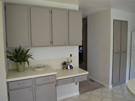 Painting Over Laminate Kitchen Cabinets - Veterinariancolleges