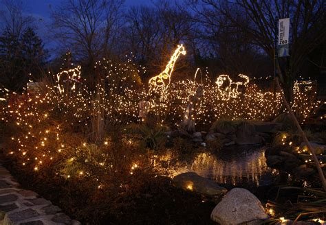 best christmas lights in nj the 14 best things to do in n j this thanksgiving weekend