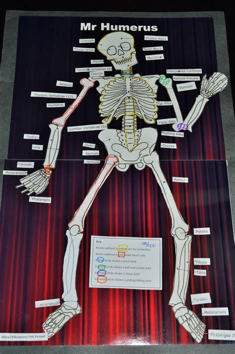 lesson plan skeletal system project skeletal system