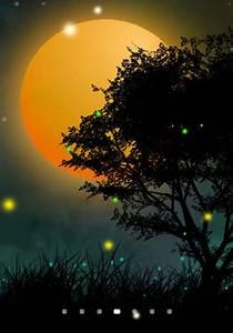 Nature Fireflies LiveWallpaper