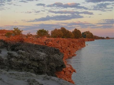 Willie Creek Boat Cruise by Images Of Willie Creek Pearl Farm Broome Attraction