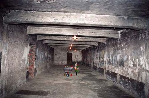 chambre a gaz faux interior of the auschwitz gas chamber krema i 2005 photos