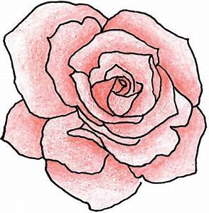 Rose Drawing Outline - ClipArt Best