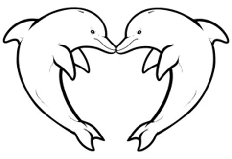 adult dolphin coloring pictures coloring pages