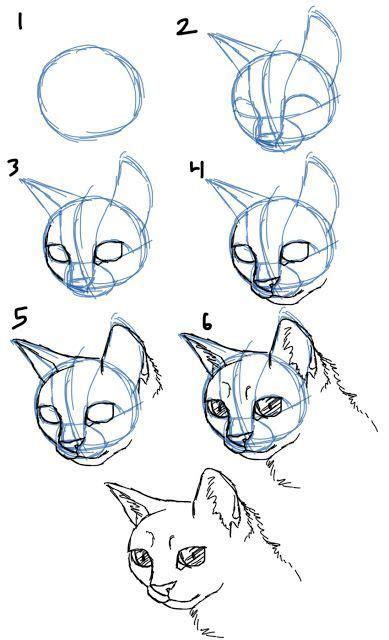 Die Besten 17 Ideen Zu Cartoon Tiere Zeichnen Auf