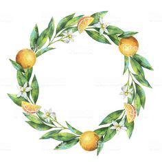 watercolor hand drawn wreath fruit orange branch isolated