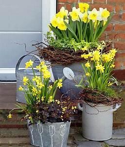 Pflanzen Im Mai : narzissen pflanzenportr t pflege und dekotipps gartenideen im fr hling deko fr hling ~ Buech-reservation.com Haus und Dekorationen