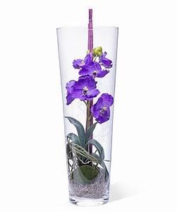 Deko Für Bodenvase : deko vase orchidee lila 50cm und freixenet semi seco jetzt bestellen bei valentins ~ Indierocktalk.com Haus und Dekorationen