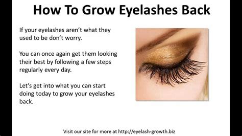 How To Grow Eyelashes Back  Youtube. Medical Assistance College Tel Aviv Security. Take Ap Courses Online Austin Moving Services. Sterling Home Insurance American Spray Liners. Doctorate In School Counseling. Auto Insurance Companies Ranking. Travel Rewards Capital One Eb Online Payment. Allstate Annuity Customer Service. Apa Accredited Psyd Programs Online