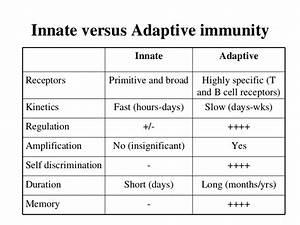 innate immunity adaptive difference - DriverLayer Search ...