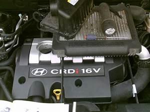 Probleme Demarrage A Froid Diesel : hyundai santa fe 2 0 crdi an 2006 probl me boite de vitesse r solu ~ Gottalentnigeria.com Avis de Voitures