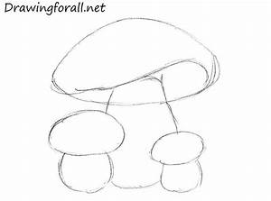 How to Draw Mushrooms for Kids | Drawingforall.net
